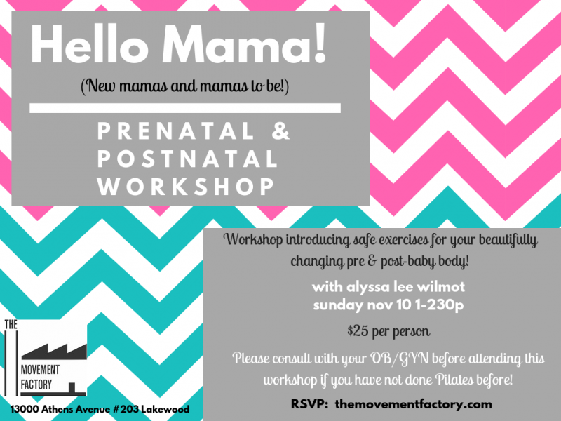 Prenatal/Postnatal Workshop